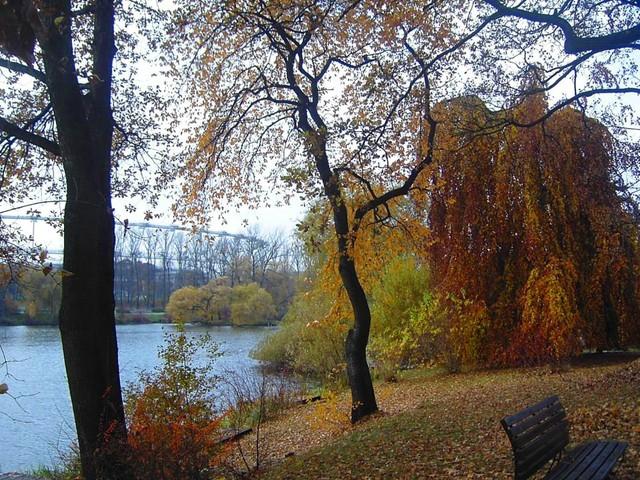 W parku nad wodą...