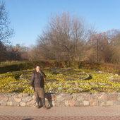 Ciechociński jesienny zegar kwiatowy