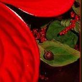 Dziś Czerwone Kwiat