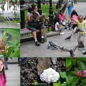 Caracas....życie codzienne.....