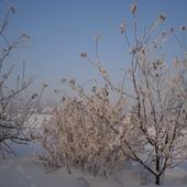 Zaczarujmy zimę...