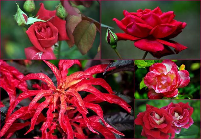 Tym......których kochamy i jesteśmy kochani ...nie tylko w dniu Walentego.......