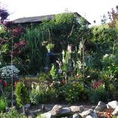 ogród w letniej szacie