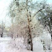 Zima dn.2.02.2012r.