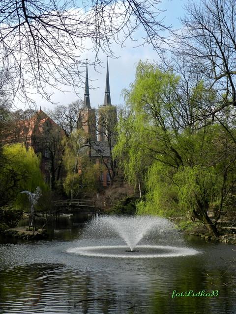 Wiosna w Ogrodzie Botanicznym-Wrocław.