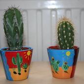 Kaktusiki Olivier i Olivka :)