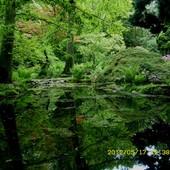 Ogród japoński Przelewice