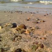 Mieleńska Plaża Wi