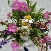 Polne kwiatuszki
