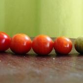 Koniec pomidorków:(