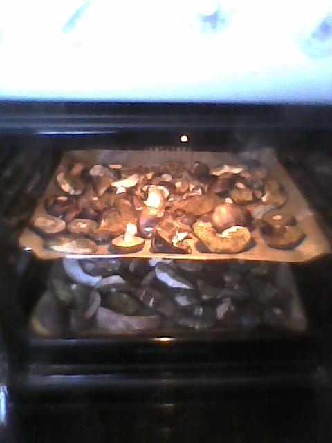 cd. grzybów-suszenie w piekarniku