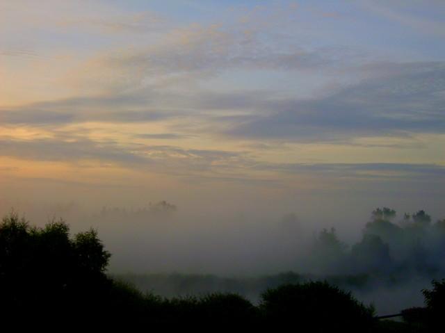 Dzisiejszy bardzo zimny, mglisty świt