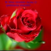Reniu w Dniu Twych urodzin życzę Ci wszystkiego najlepszego!!!
