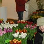 Na Wystawie Tulipanów