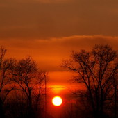 Dobranoc słoneczko