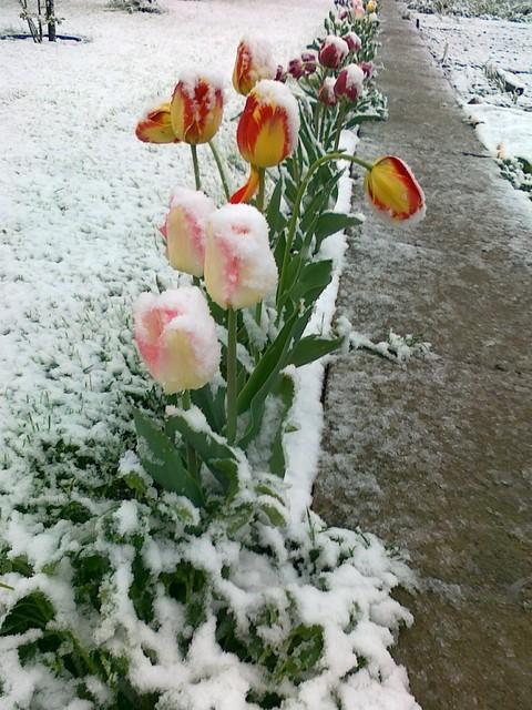 wiosna czy zima 2