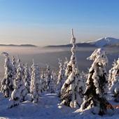 Zimowa  aura...