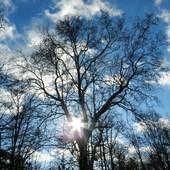 Błękit nieba