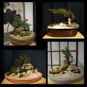 Japońskie ogrody w miniaturze .