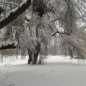 Nadal zimowo...