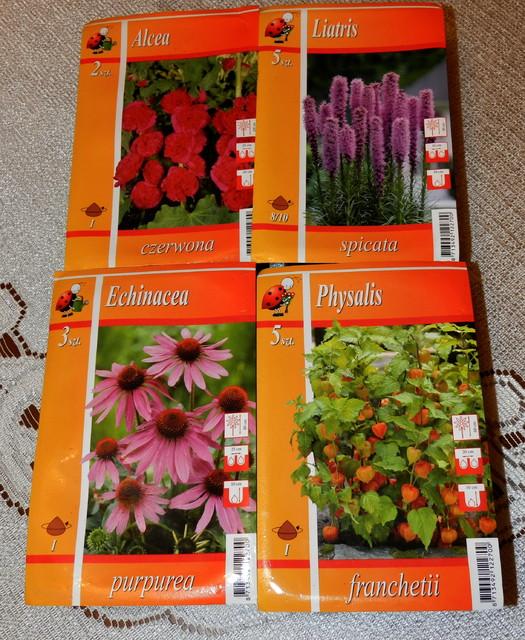 Moje nowe roślinki