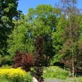 Ogród Botaniczny wiosną