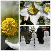 Pierwszy Dzień Wiosny 2013
