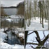 Wiosna 2013