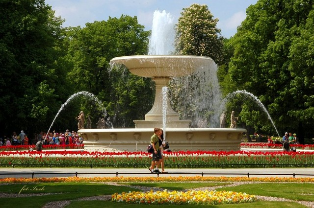 fontanna i kwiaty