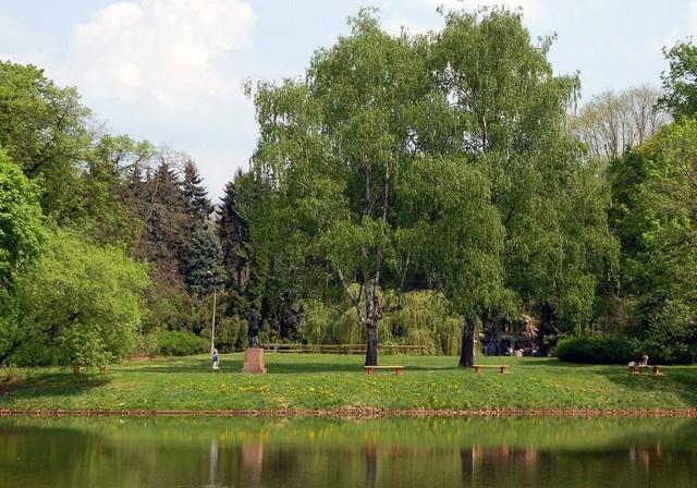 wiosną w parku...