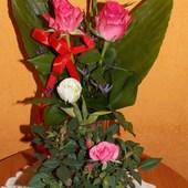 Takie kwiatuszki dostałam od moich dzieci a okazji dnia Matki :)