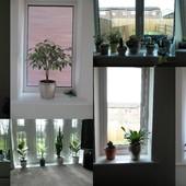 Nowe okna :)