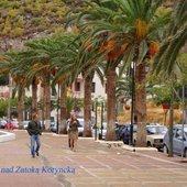 palmy w Grecji