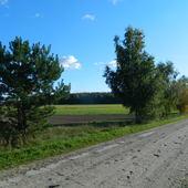 Błękitnego nieba i słoneczka na nadchodzący tydzień:)