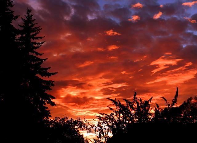 Zachód słońca      - 2013.10.28