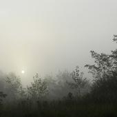 Jesienne mgły.