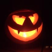 moja halloweenowa roslinka