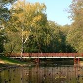 mostek w parku