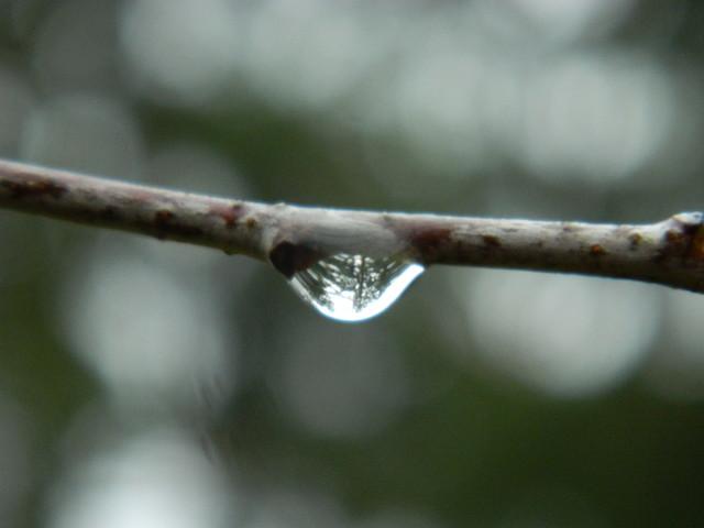 Pada,pada deszcz....