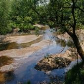 rzeka Świder