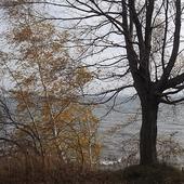 zawiało , czas jesieni i zadumy
