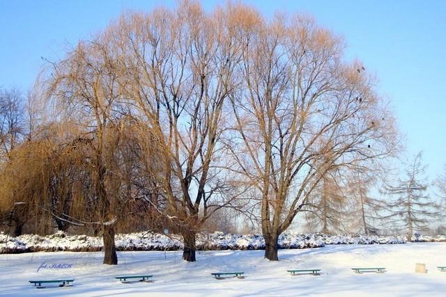na zimowo