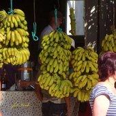 kupujcie banany