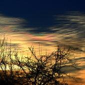 Dzisiejszy wschód słońca.
