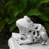 Pocałuj żabkę w łapkę