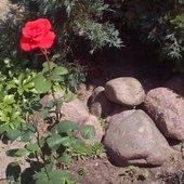...róże i kamienie- to moja ulubiona kompozycja....
