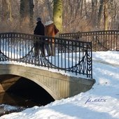 w parku zimą