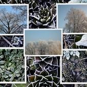 Witam świątecznie i . . . . .zimowo :)