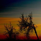 Zachód słońca w kolorach tęczy.