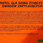 Hotel - opis